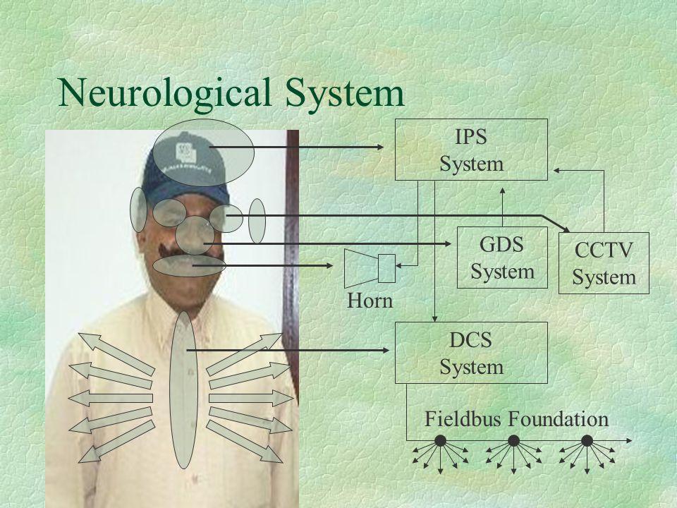 Neurological System IPS System DCS System Horn GDS System CCTV System Fieldbus Foundation