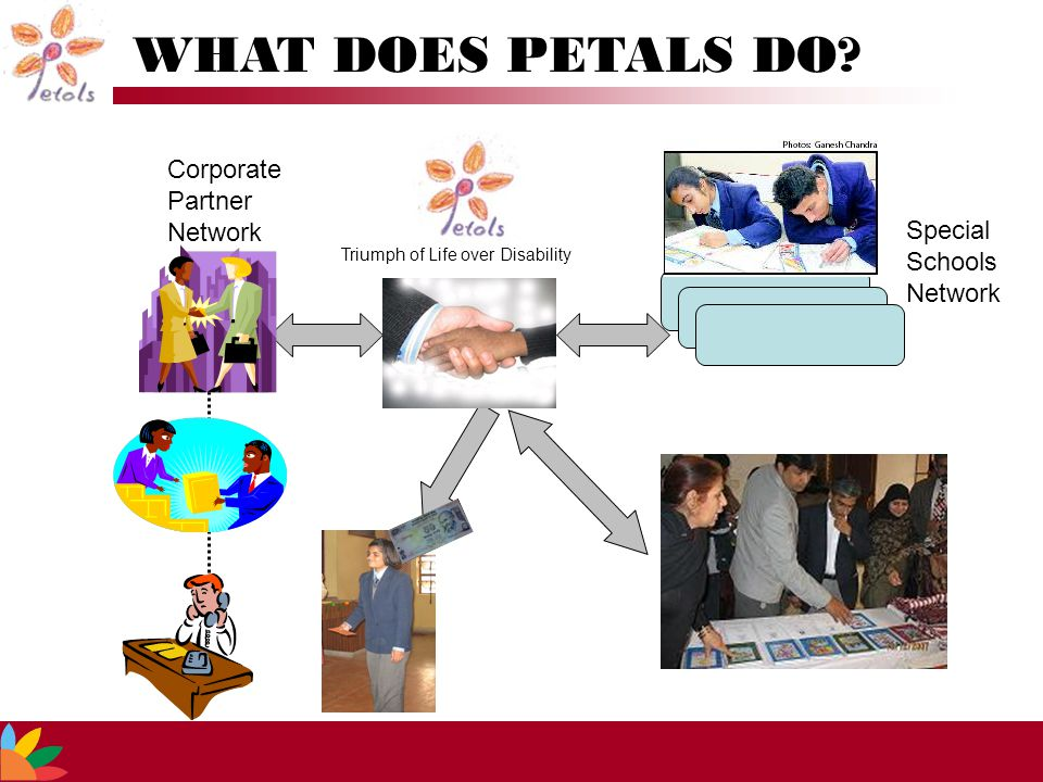 Corporate Partner Network Special Schools Network WHAT DOES PETALS DO.