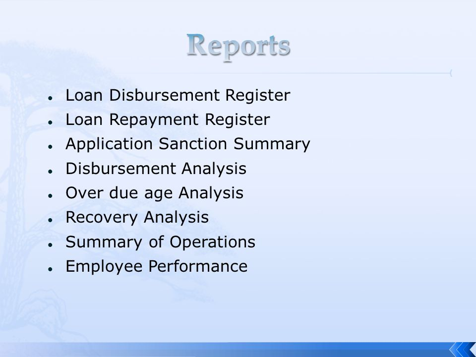 Loan Disbursement Register Loan Repayment Register Application Sanction Summary Disbursement Analysis Over due age Analysis Recovery Analysis Summary of Operations Employee Performance