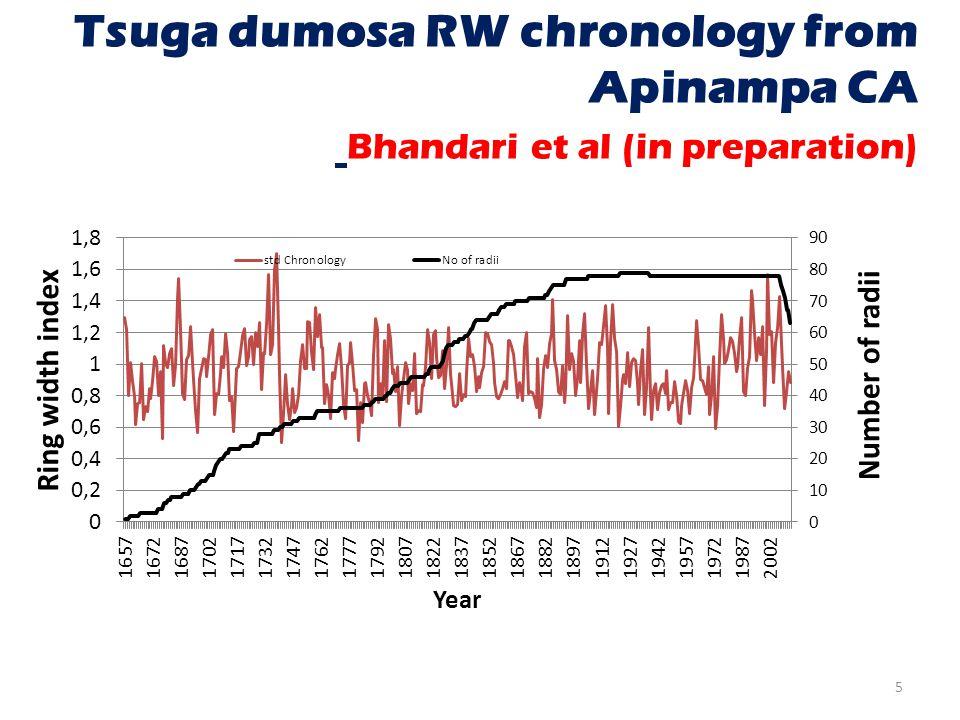 Tsuga dumosa RW chronology from Apinampa CA Bhandari et al (in preparation) 5