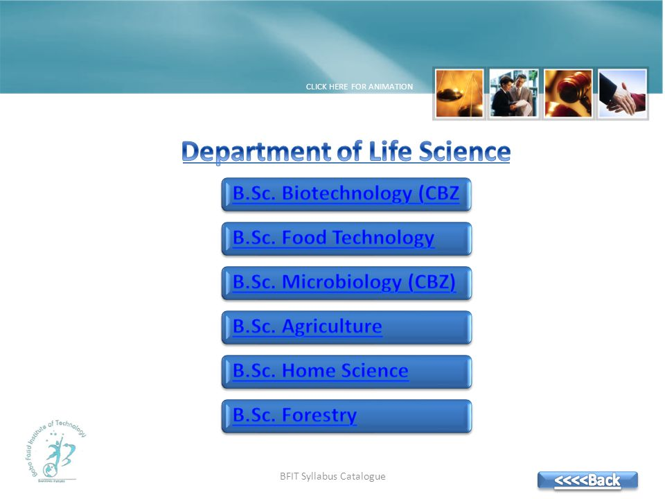 BFIT Syllabus Catalogue CLICK HERE FOR ANIMATION
