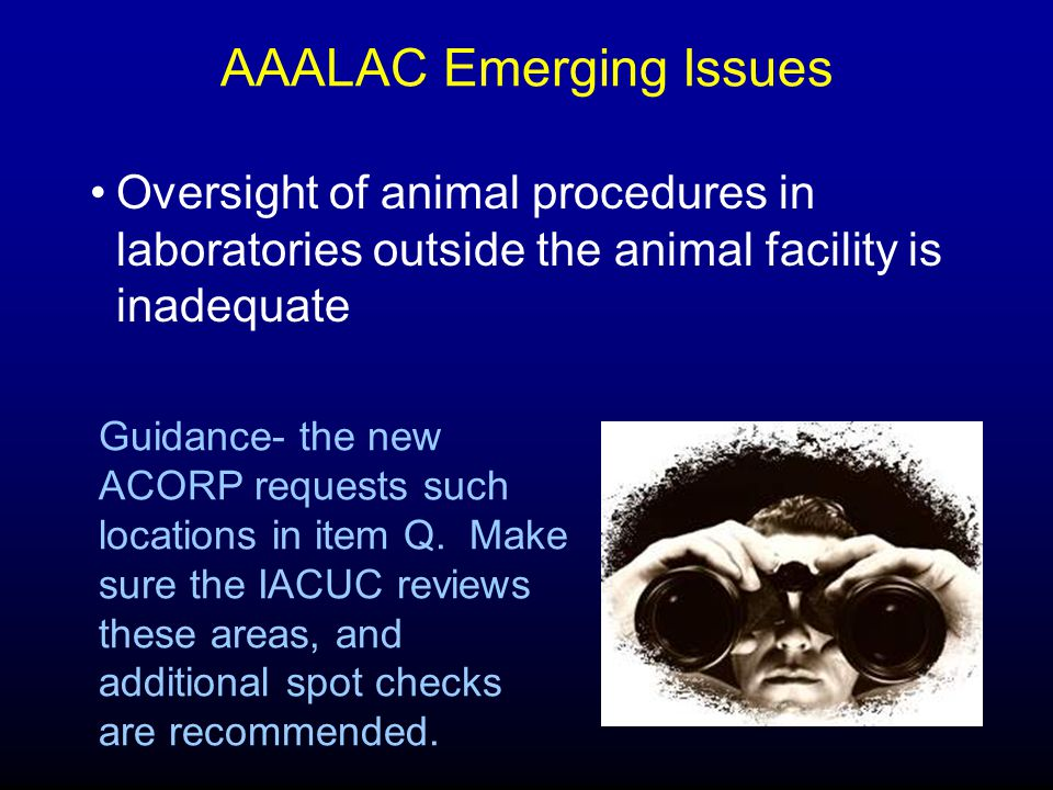 AAALAC Emerging Issues Oversight of animal procedures in laboratories outside the animal facility is inadequate Guidance- the new ACORP requests such locations in item Q.