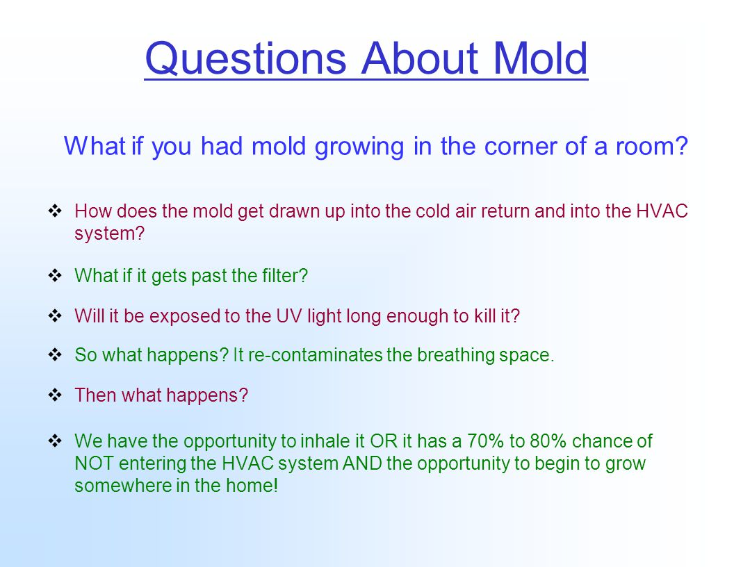 Questions About Mold What if you had mold growing in the corner of a room.