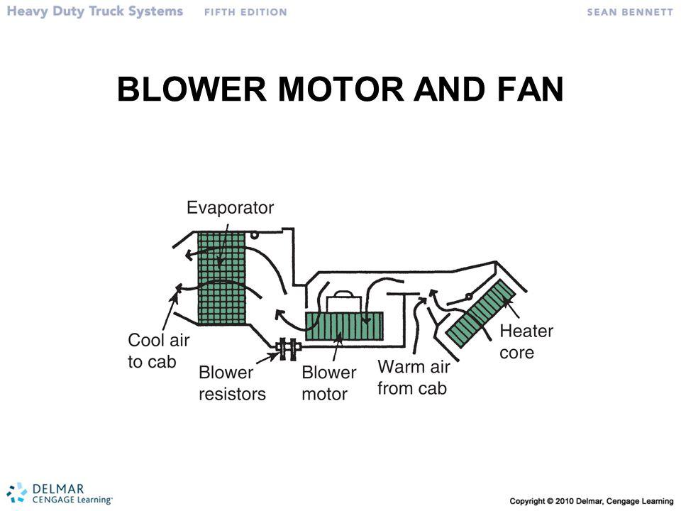 BLOWER MOTOR AND FAN
