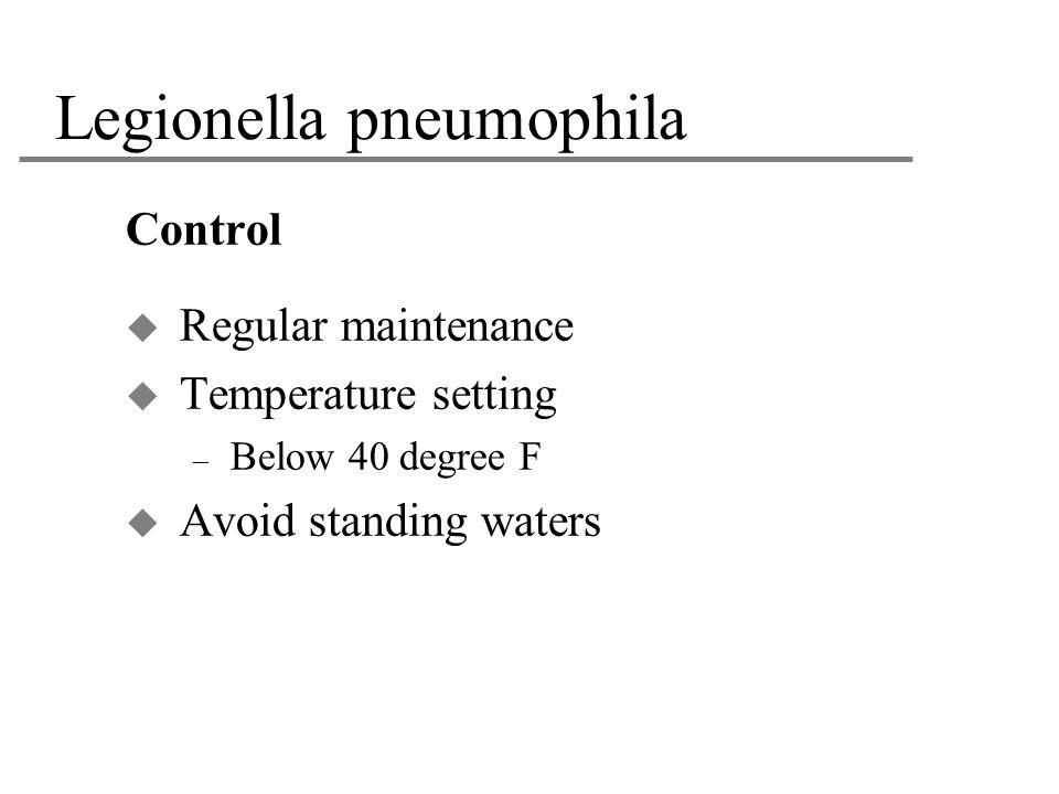 Legionella pneumophila Control  Regular maintenance  Temperature setting – Below 40 degree F  Avoid standing waters