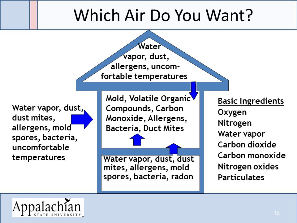 Which Air Do You Want.