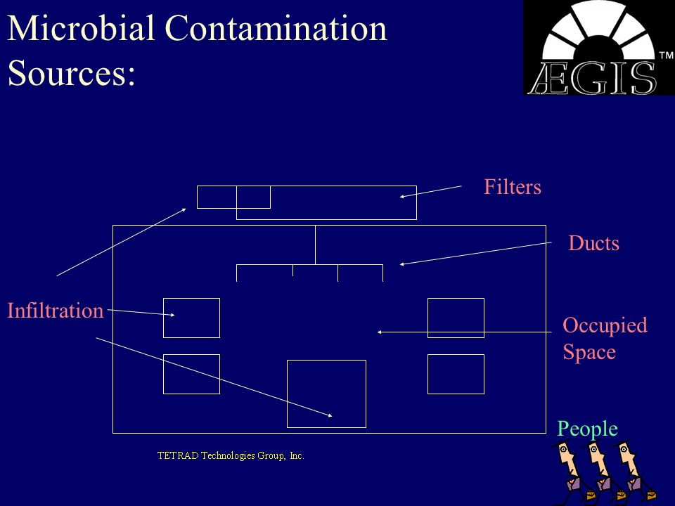 Microbial Contamination Sources: Infiltration Occupied Space Ducts Filters People
