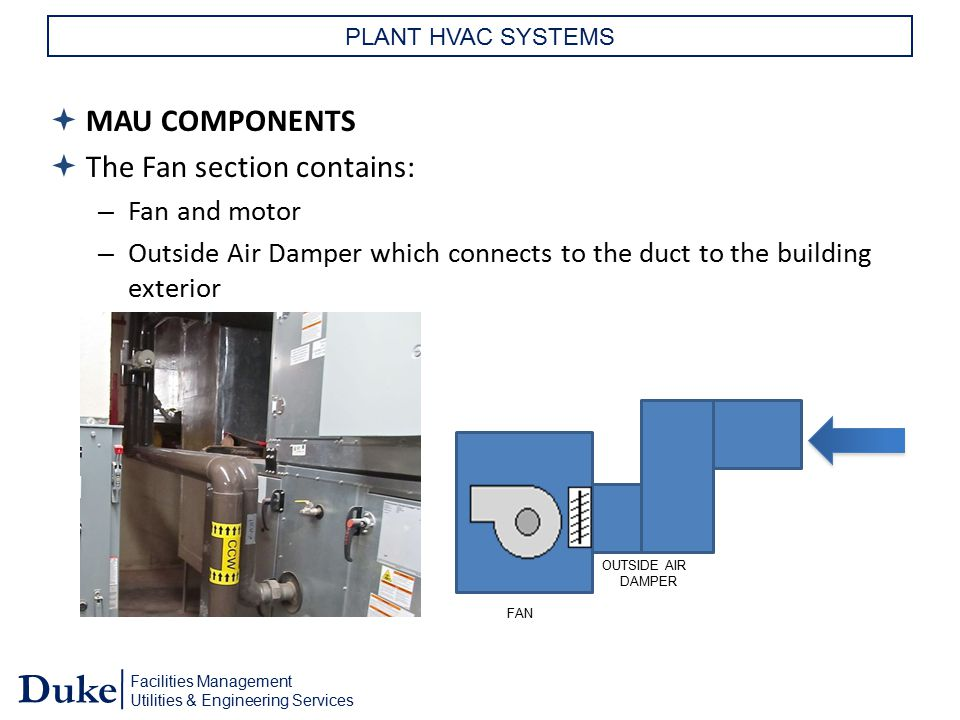 Facilities Management Utilities & Engineering Services Duke PLANT HVAC SYSTEMS  MAU COMPONENTS  The Fan section contains: – Fan and motor – Outside