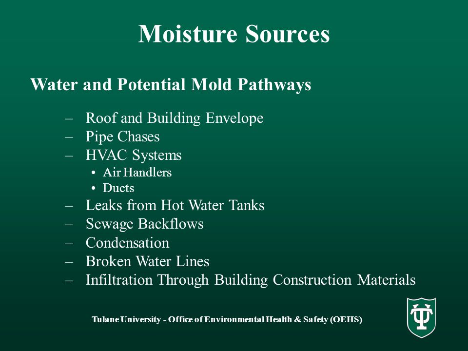 Tulane University - Office of Environmental Health & Safety (OEHS) Moisture Sources Water and Potential Mold Pathways –Roof and Building Envelope –Pip