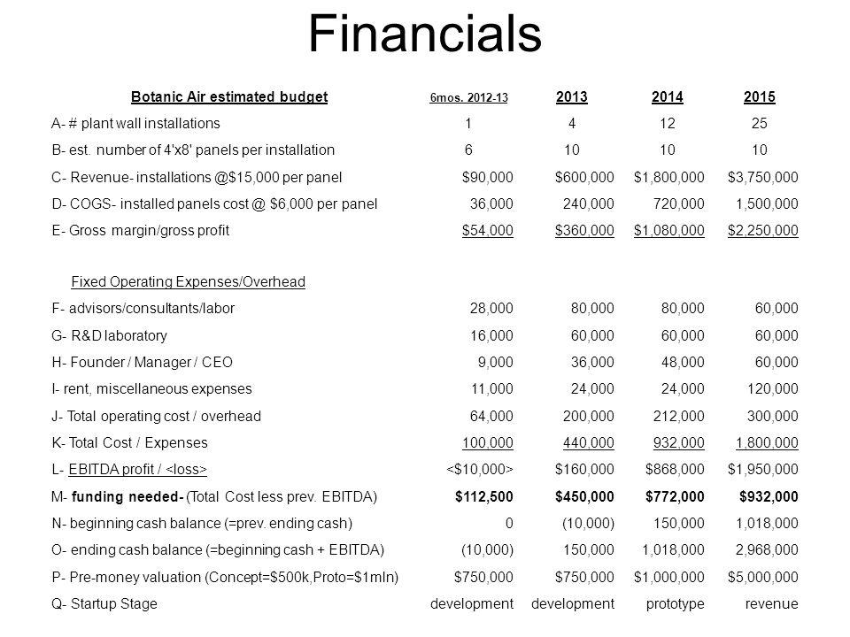 Financials Botanic Air estimated budget 6mos.