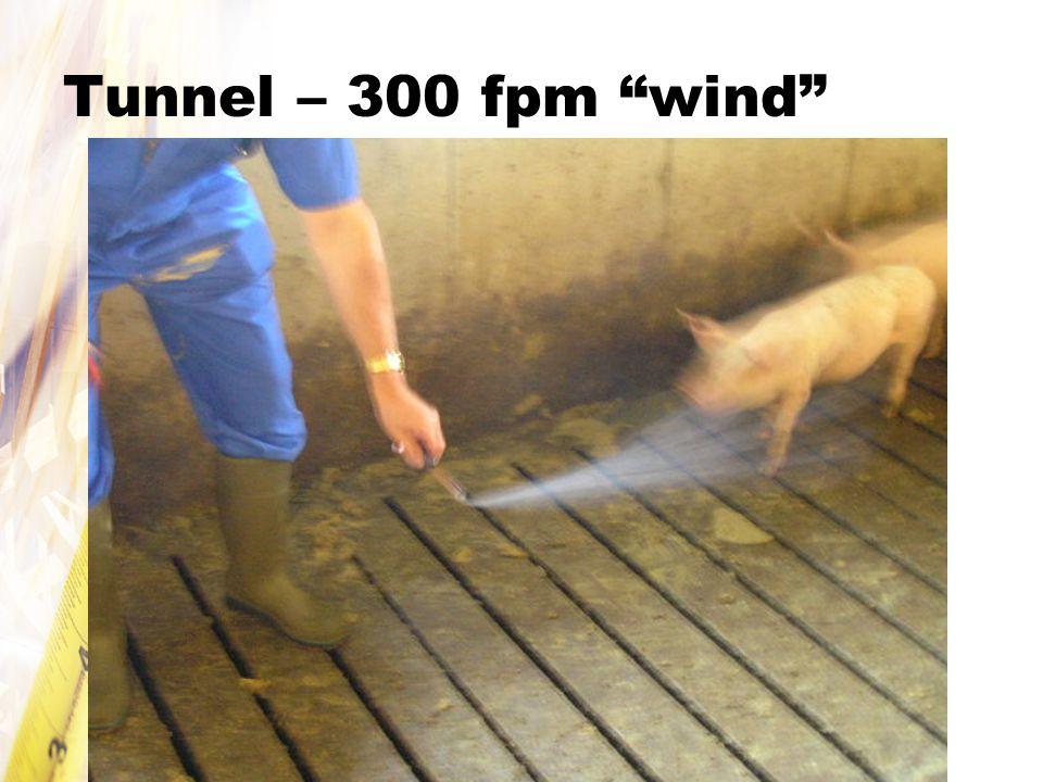 Tunnel – 300 fpm wind