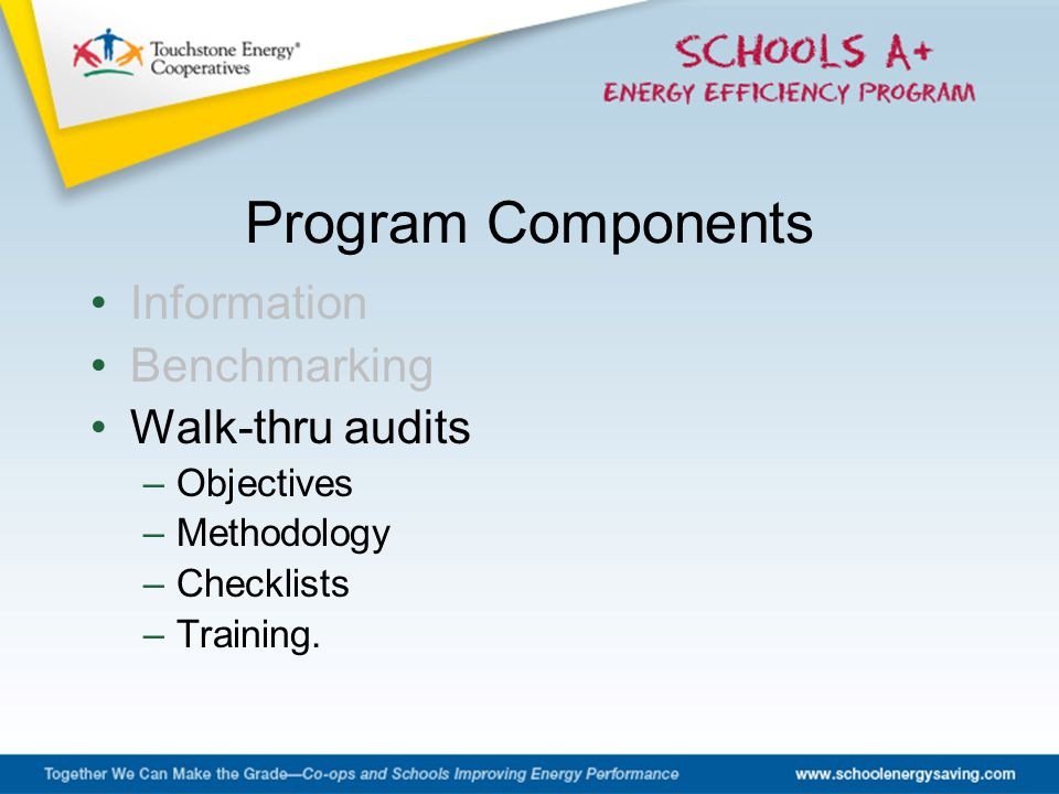 Information Benchmarking Walk-thru audits –Objectives –Methodology –Checklists –Training. Program Components