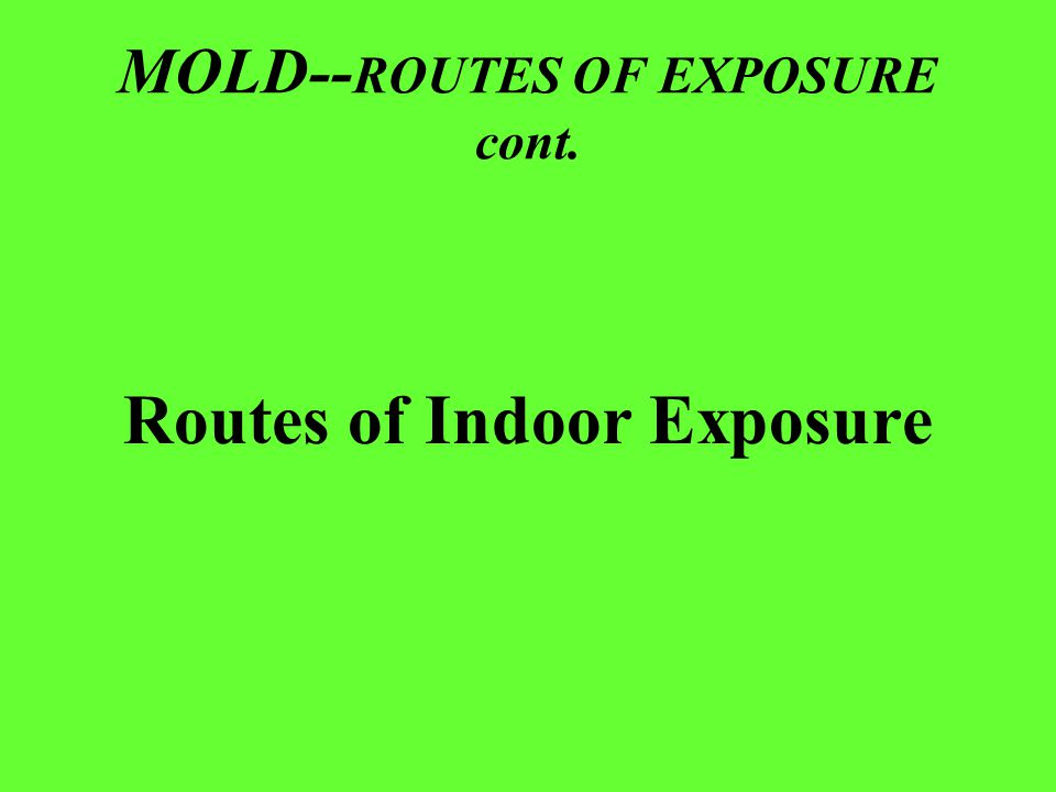 MOLD-- ROUTES OF EXPOSURE cont. Routes of Indoor Exposure