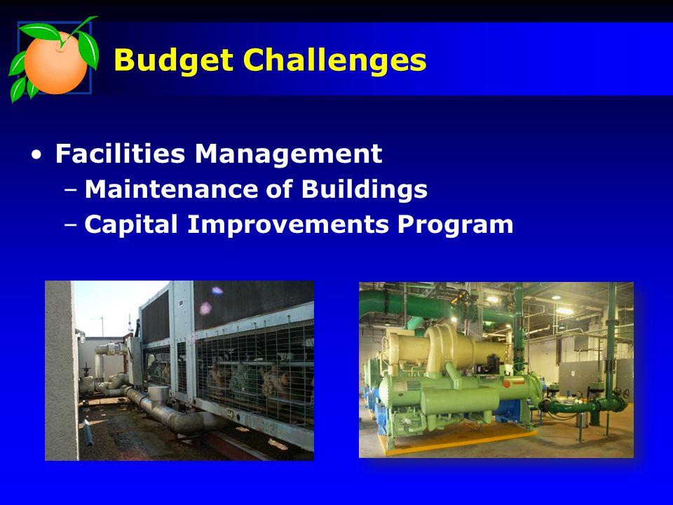 Facilities Management –Maintenance of Buildings –Capital Improvements Program Budget Challenges
