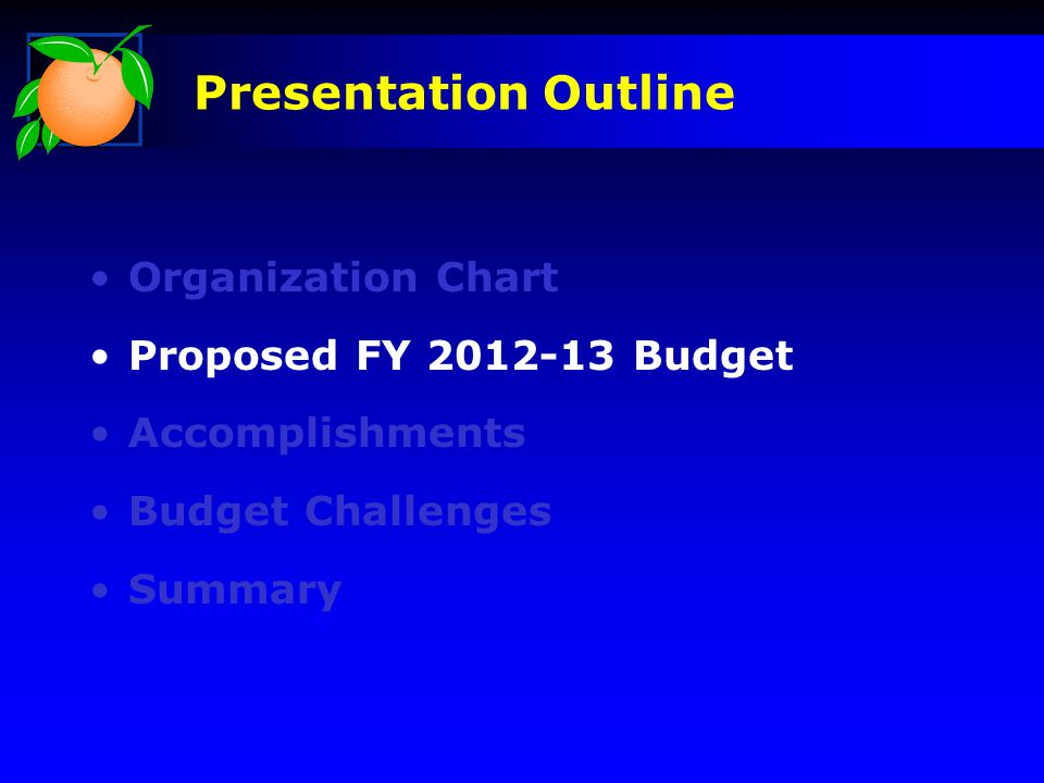 Organization Chart Proposed FY 2012-13 Budget Accomplishments Budget Challenges Summary Presentation Outline