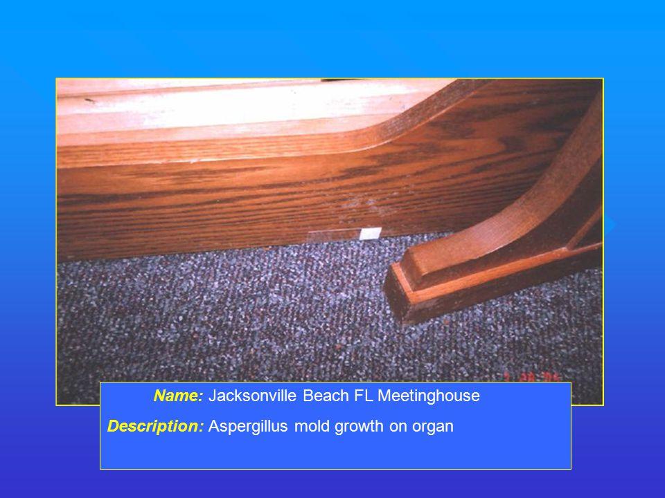 Name: Jacksonville Beach FL Meetinghouse Description: Aspergillus mold growth on organ
