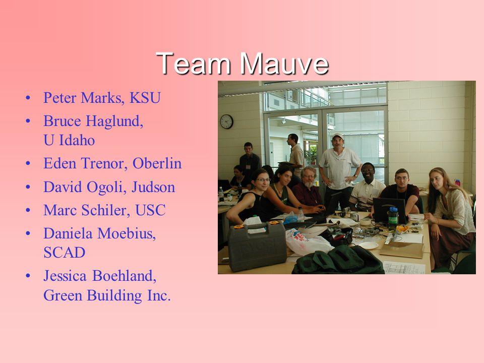 Team Mauve Peter Marks, KSU Bruce Haglund, U Idaho Eden Trenor, Oberlin David Ogoli, Judson Marc Schiler, USC Daniela Moebius, SCAD Jessica Boehland,