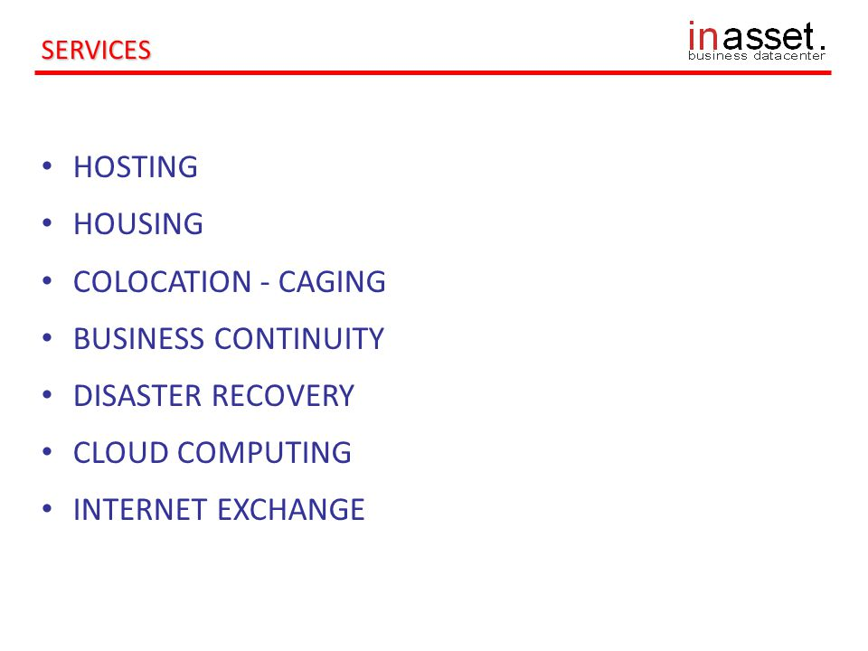HOSTING HOUSING COLOCATION - CAGING BUSINESS CONTINUITY DISASTER RECOVERY CLOUD COMPUTING INTERNET EXCHANGE SERVICES