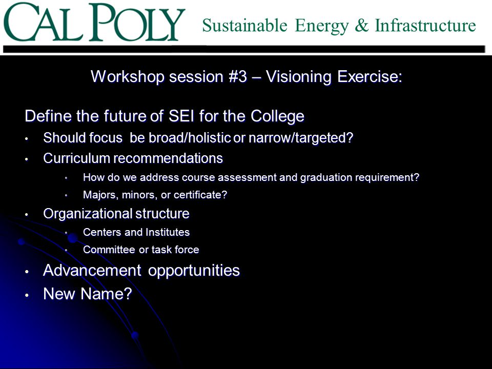 Workshop session #3 – Visioning Exercise: Define the future of SEI for the College Should focus be broad/holistic or narrow/targeted? Should focus be