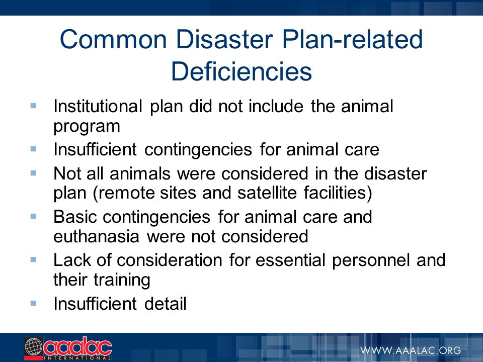 Common Disaster Plan-related Deficiencies  Institutional plan did not include the animal program  Insufficient contingencies for animal care  Not a