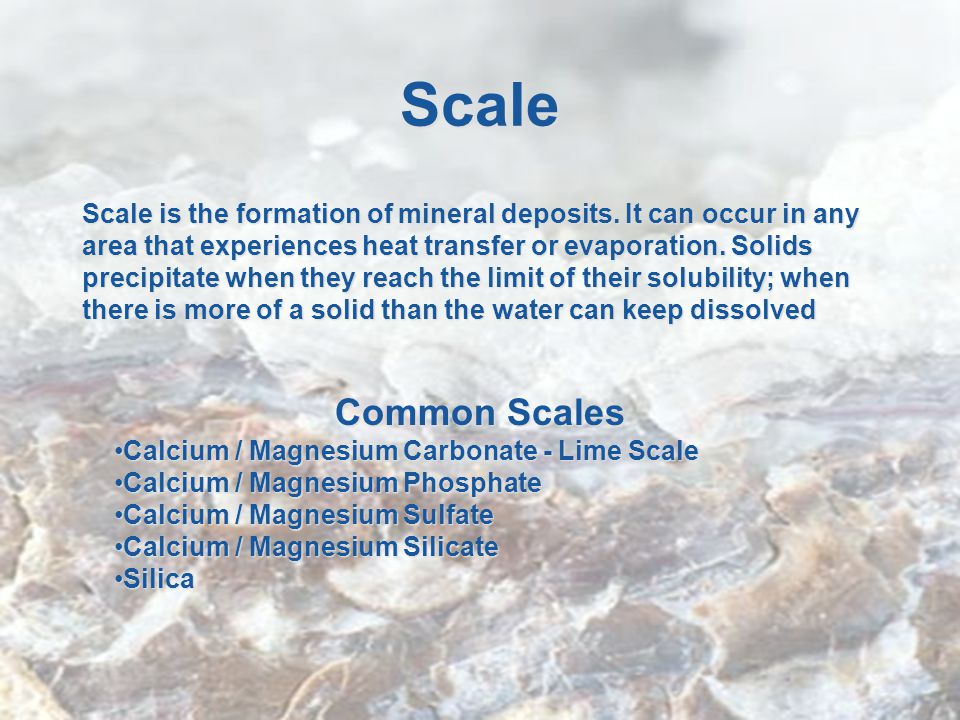 Scale Scale is the formation of mineral deposits.