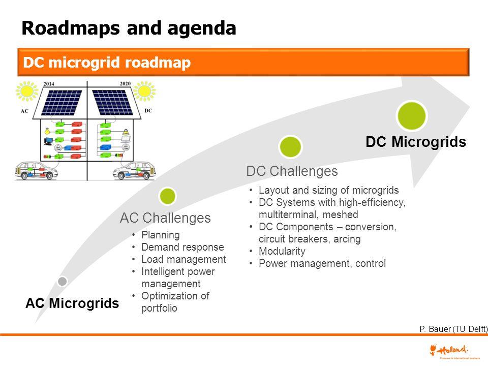 Roadmaps and agenda Planning Demand response Load management Intelligent power management Optimization of portfolio Layout and sizing of microgrids DC