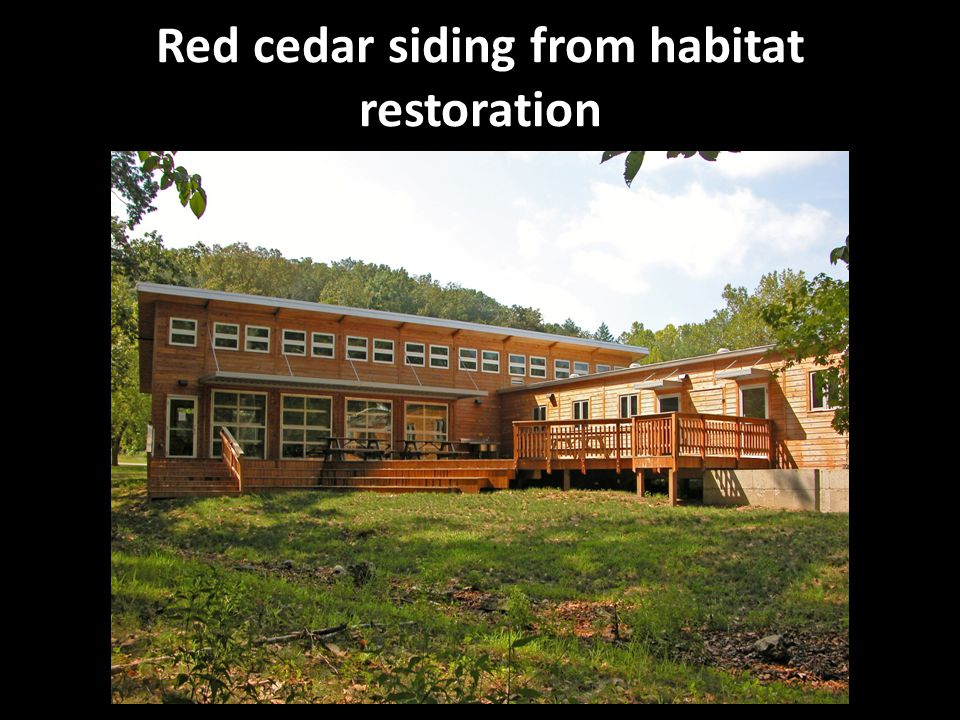 Red cedar siding from habitat restoration