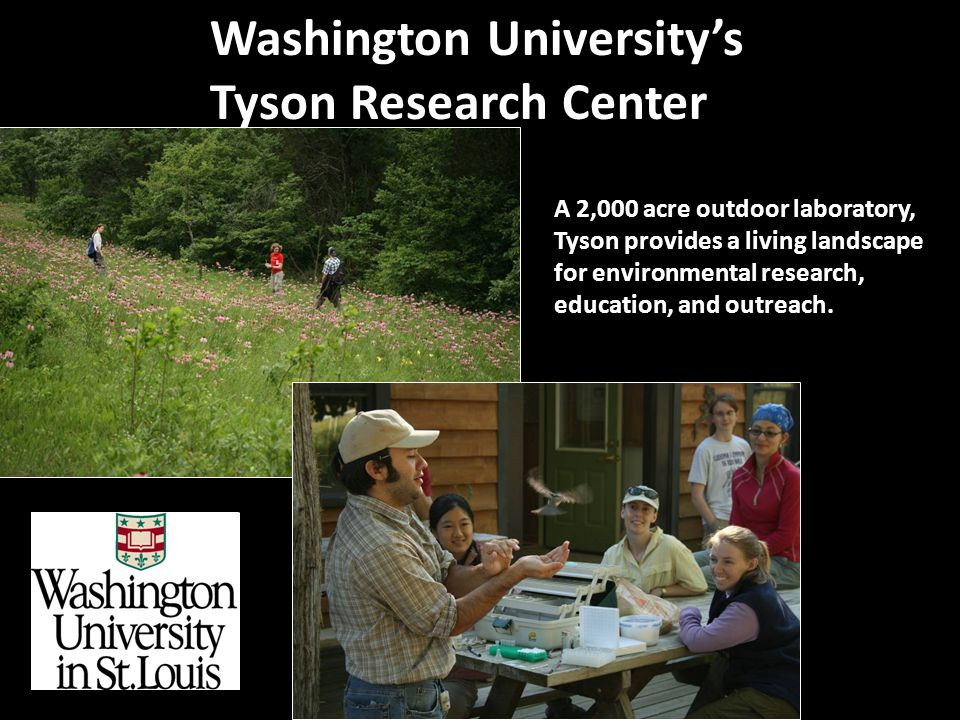 A 2,000 acre outdoor laboratory, Tyson provides a living landscape for environmental research, education, and outreach.