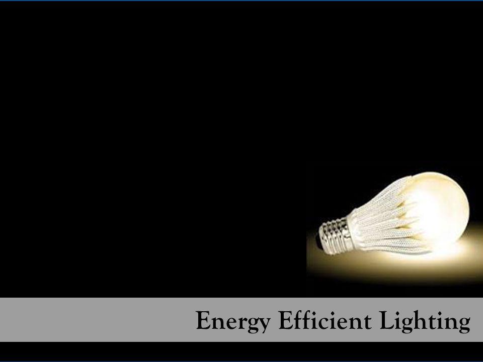 Energy Efficient Lighting 850,000 CFLs distributed since 2003 1,500 LEDs distributed since 2012 Energy Efficient Lighting