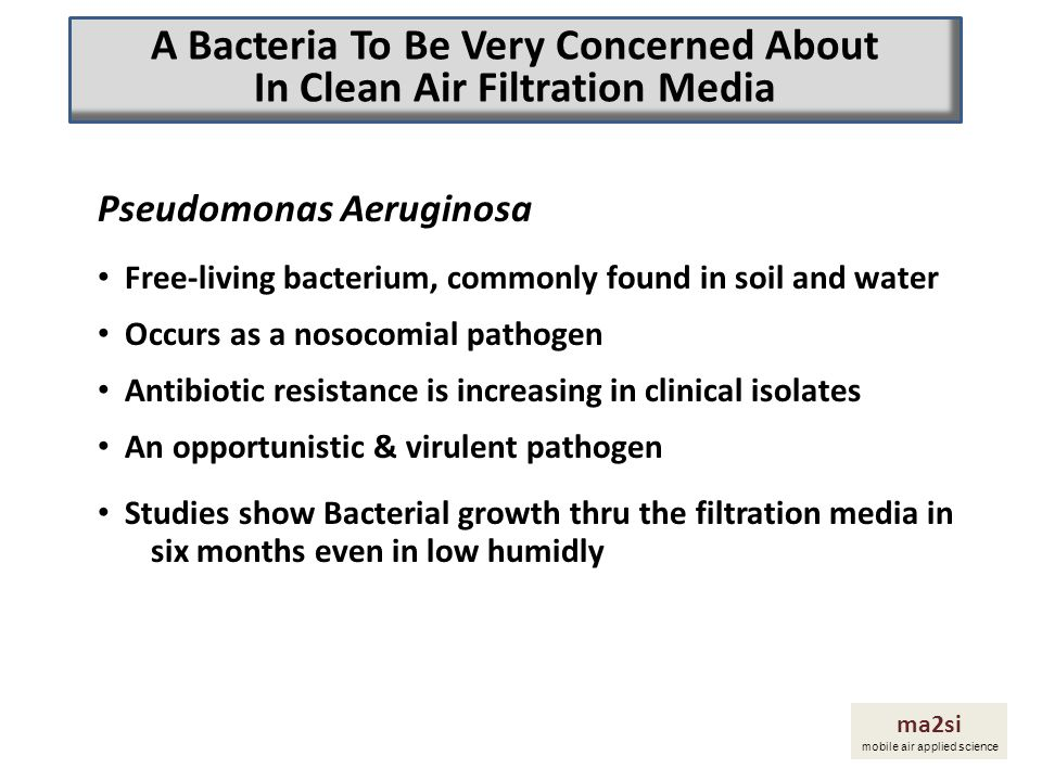 Pseudomonas Aeruginosa Free-living bacterium, commonly found in soil and water Occurs as a nosocomial pathogen Antibiotic resistance is increasing in