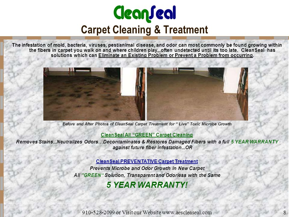 910-528-2099 or Visit our Website www.aescleaseal.com8 Carpet Cleaning & Treatment The infestation of mold, bacteria, viruses, pest/animal disease, an