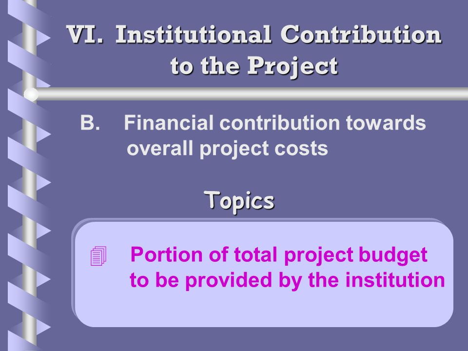 VI. Institutional Contribution to the Project B.