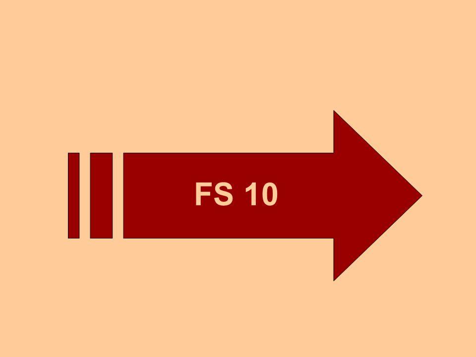FS 10