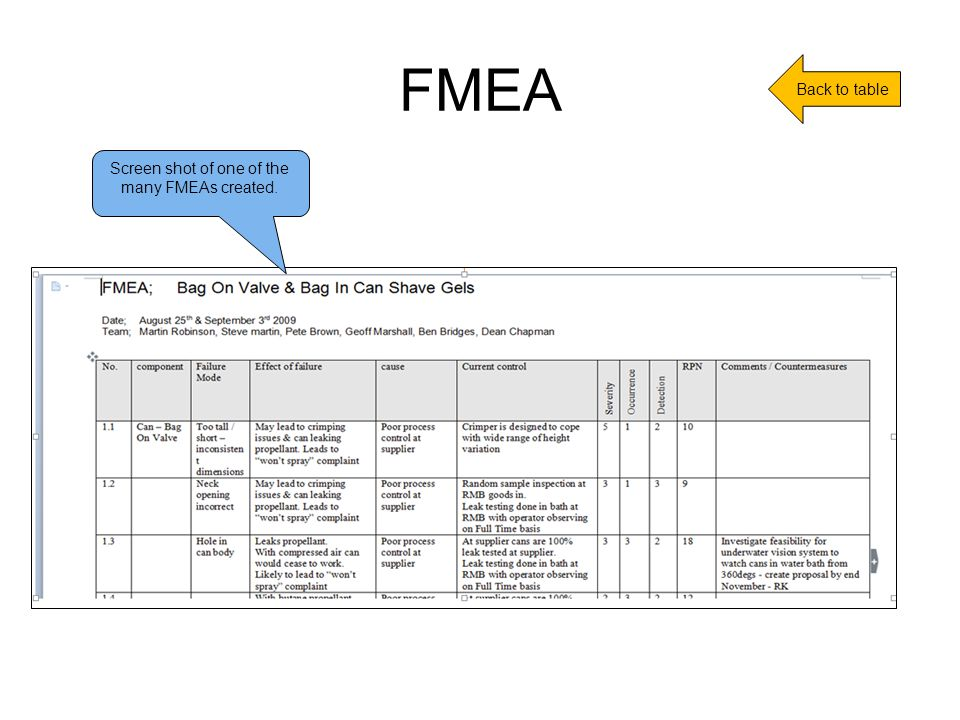 FMEA Screen shot of one of the many FMEAs created. Back to table