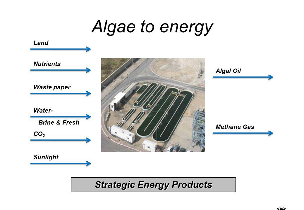 Algae to energy Land Nutrients Algal Oil Waste paper Sunlight CO 2 Water- Brine & Fresh Methane Gas Strategic Energy Products