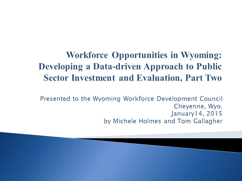 Presented to the Wyoming Workforce Development Council Cheyenne, Wyo. January14, 2015 by Michele Holmes and Tom Gallagher