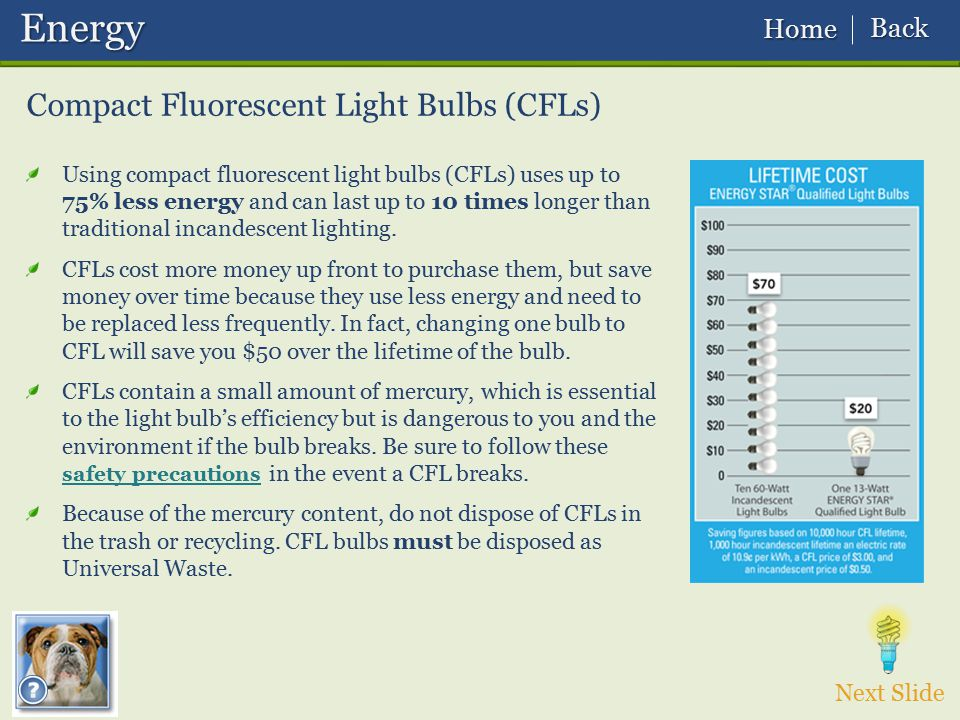 Compact Fluorescent Light Bulbs (CFLs) Next Slide Energy Energy Using compact fluorescent light bulbs (CFLs) uses up to 75% less energy and can last u