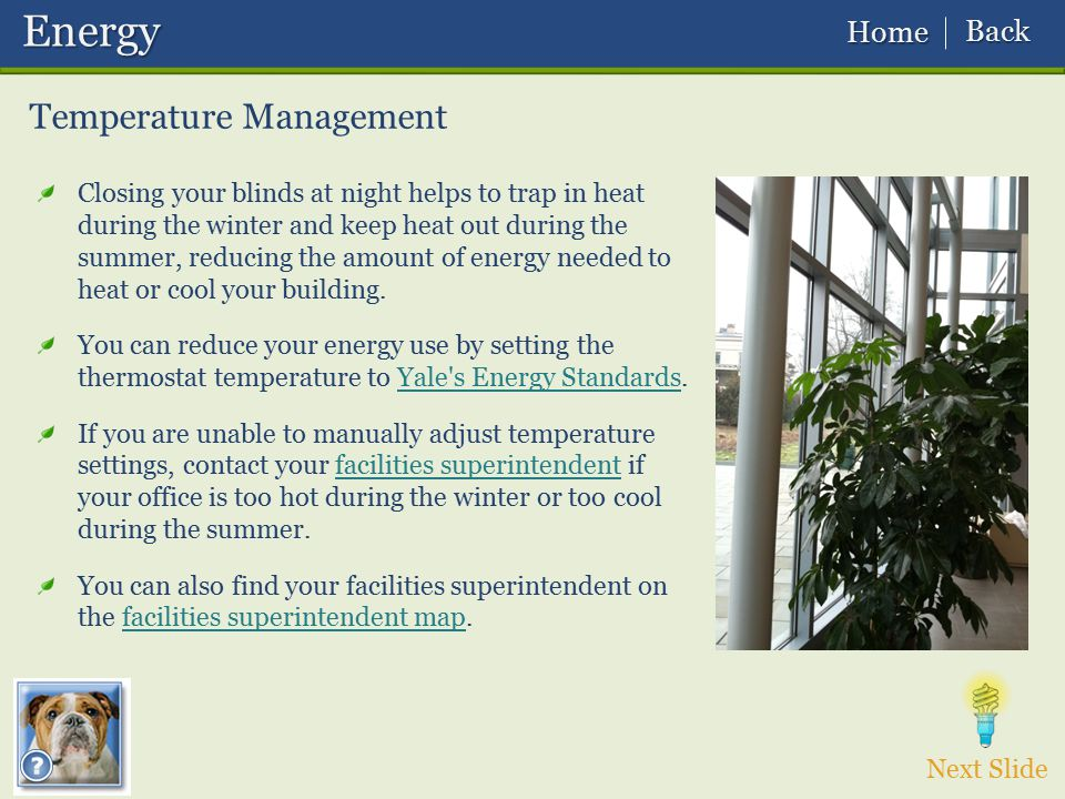 Temperature Management Next Slide Energy Energy Closing your blinds at night helps to trap in heat during the winter and keep heat out during the summ