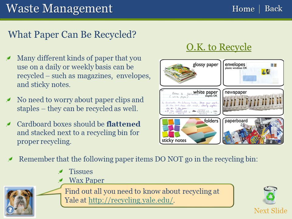 Waste Management Waste Management What Paper Can Be Recycled? Tissues Wax Paper Food residue Many different kinds of paper that you use on a daily or