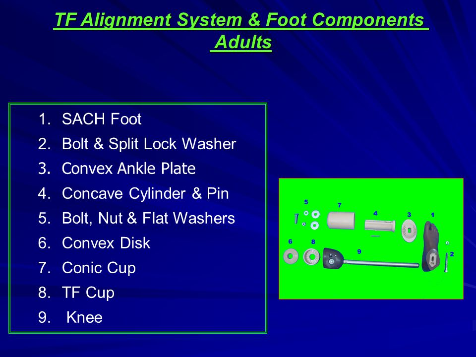 1.SACH Foot 2.Bolt & Split Lock Washer 3.Convex Ankle Plate 4.Concave Cylinder & Pin 5.Bolt, Nut & Flat Washers 6.Convex Disk 7.Conic Cup 8.TF Cup 9.
