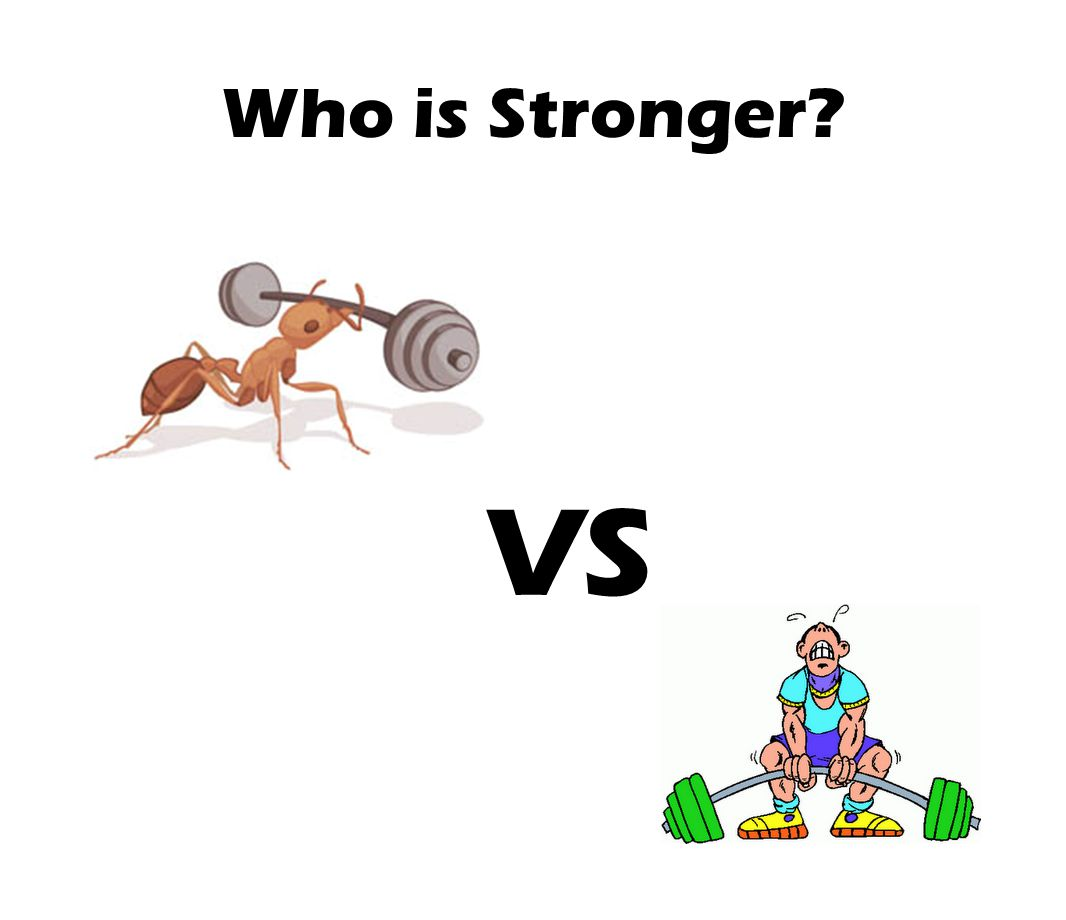 Who is Stronger? VS