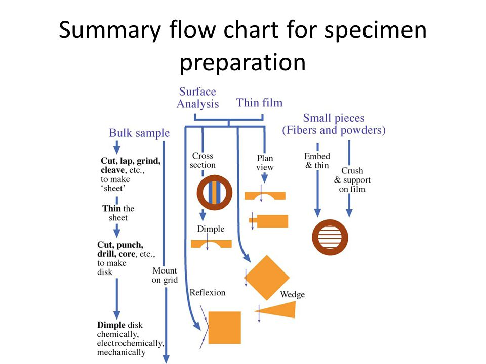 Summary flow chart for specimen preparation
