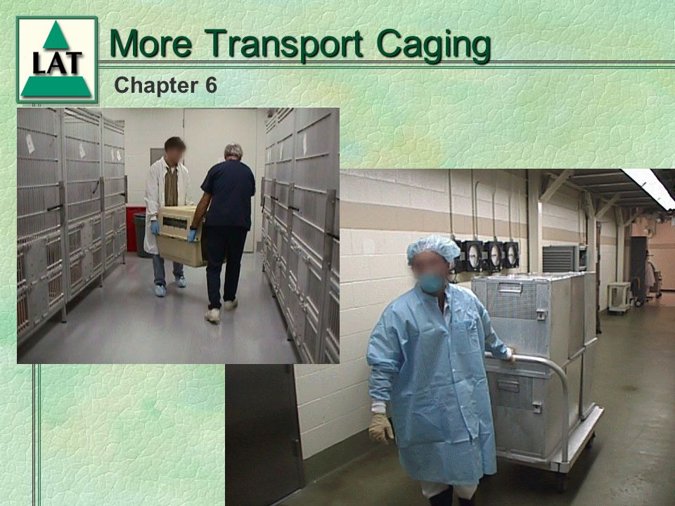 Chapter 6 More Transport Caging
