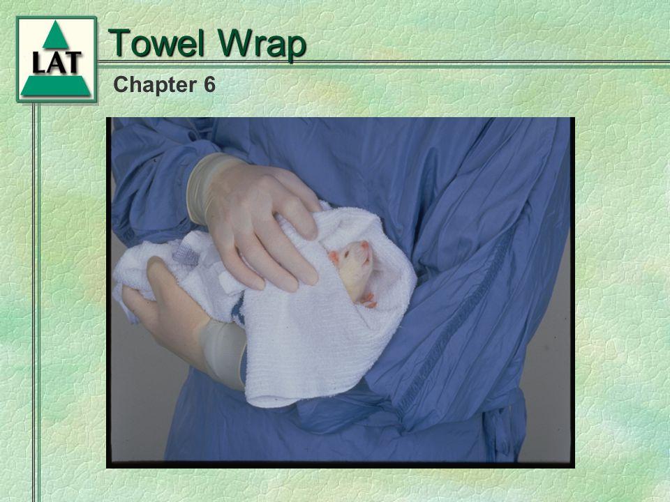 Chapter 6 Towel Wrap Towel Restraint