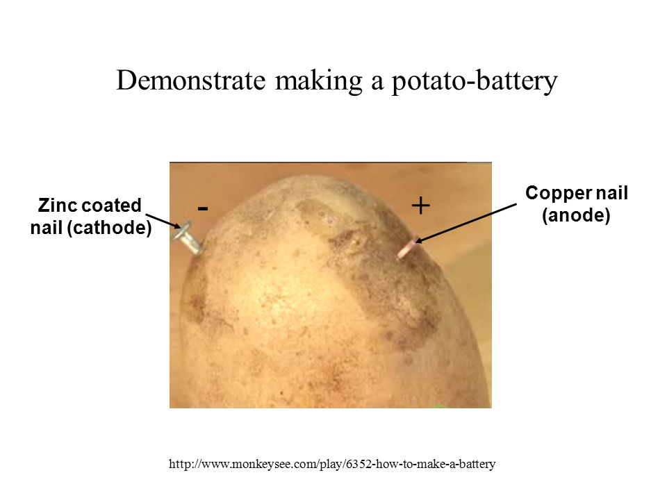 Demonstrate making a potato-battery +- Copper nail (anode) Zinc coated nail (cathode) http://www.monkeysee.com/play/6352-how-to-make-a-battery