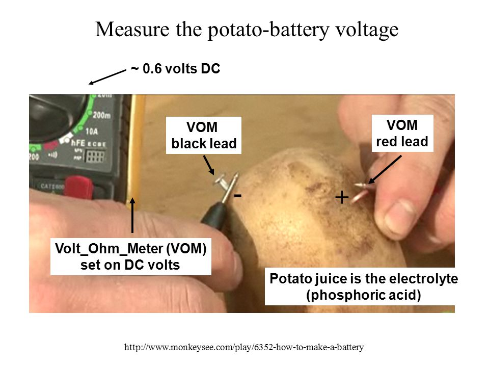 Measure the potato-battery voltage http://www.monkeysee.com/play/6352-how-to-make-a-battery VOM red lead VOM black lead Volt_Ohm_Meter (VOM) set on DC volts ~ 0.6 volts DC Potato juice is the electrolyte (phosphoric acid) + -