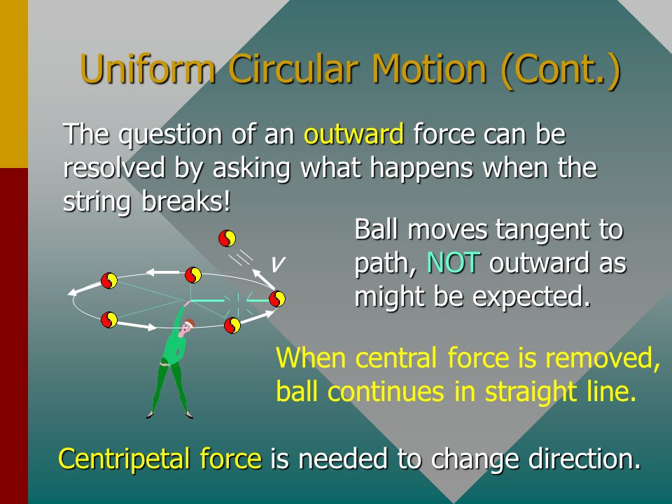 Uniform Circular Motion (Cont.) The question of an outward force can be resolved by asking what happens when the string breaks.