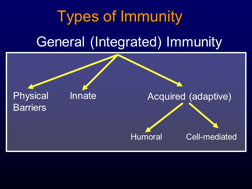 Types of Immunity General (Integrated) Immunity Physical Barriers Innate Acquired (adaptive) HumoralCell-mediated