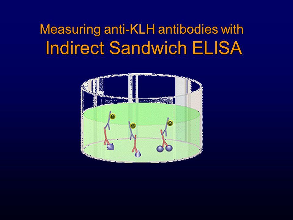 Measuring anti-KLH antibodies with Indirect Sandwich ELISA