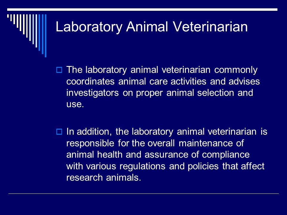 Laboratory Animal Veterinarian  The laboratory animal veterinarian commonly coordinates animal care activities and advises investigators on proper an